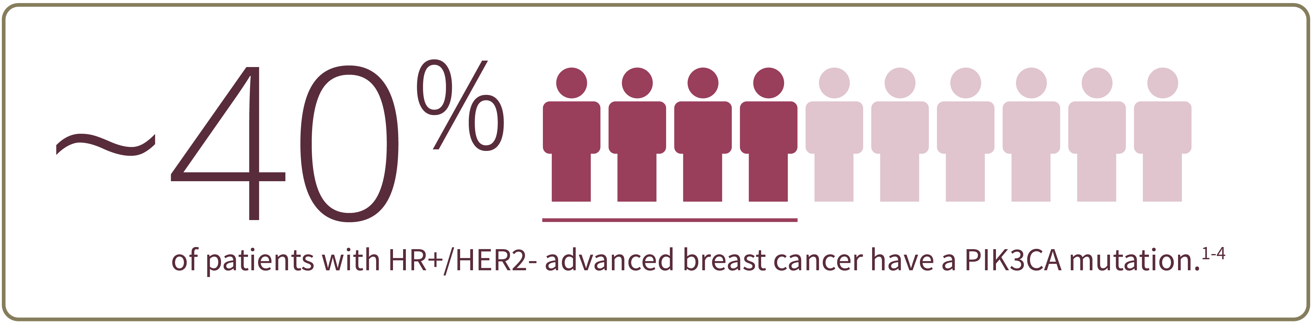 ~40% of patients with HR+/ HER2- advanced breast cancer have a PIK3CA mutation